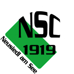 l14036-nsc-1919-logo-91310-300x300